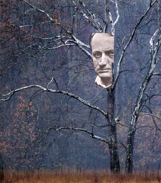 Baudelaire In The Trees