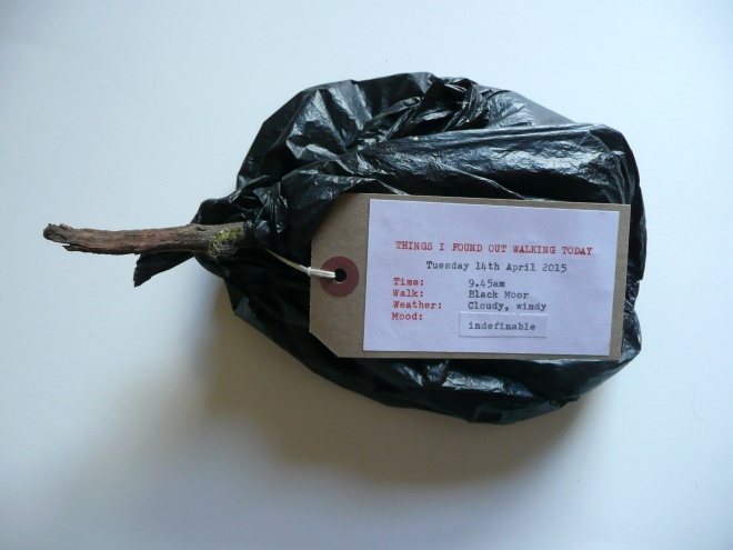 Found objects in dog waste bag, label (front)